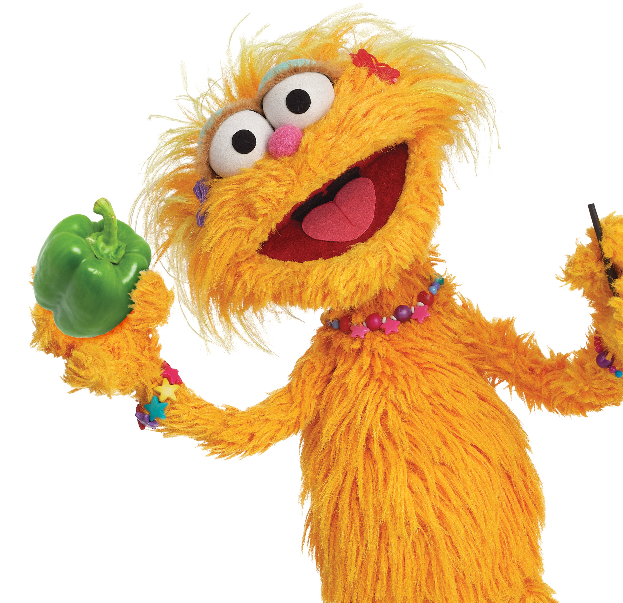 Zoe Sesame Street Cartoon Face Www Imgkid Com The